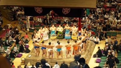 Match Sumo