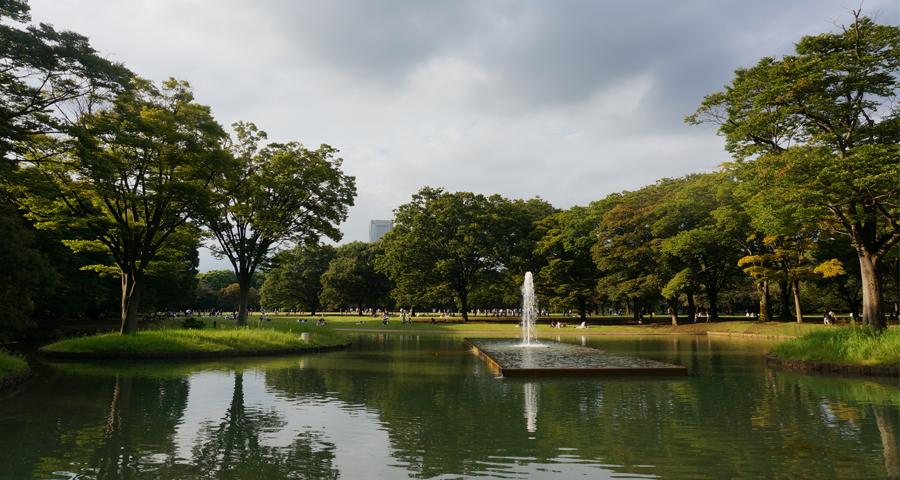 Voyage au Japon – Le parc Yoyogi