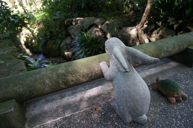 Meigetsu in Kamakura